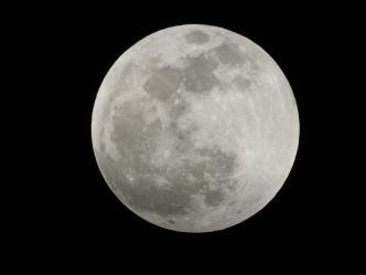 Super Blood Wolf Moon Eclipse - 1-20-2019 #1