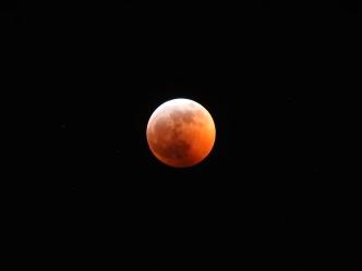 Super Blood Wolf Moon Eclipse - 1-20-2019 #16