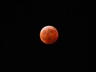 Super Blood Wolf Moon Eclipse - 1-20-2019 #19
