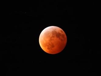 Super Blood Wolf Moon Eclipse - 1-20-2019 #20