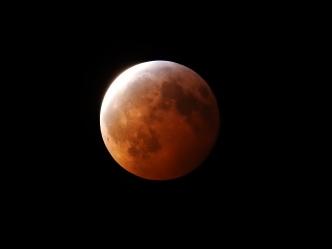 Super Blood Wolf Moon Eclipse - 1-20-2019 #21