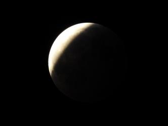 Super Blood Wolf Moon Eclipse - 1-20-2019 #26